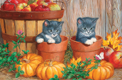 Kittens with Pumpkins